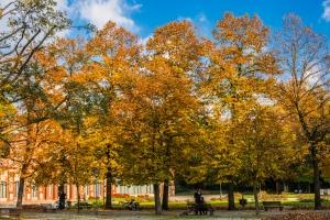 Giardini pubblici - Autumn colours