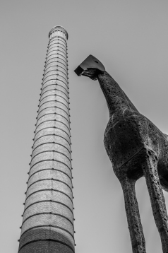 Palladino's horse and chimney of the Manifattura Tabacchi