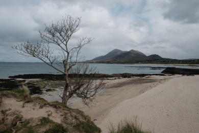 Croagh Patrick in the distance